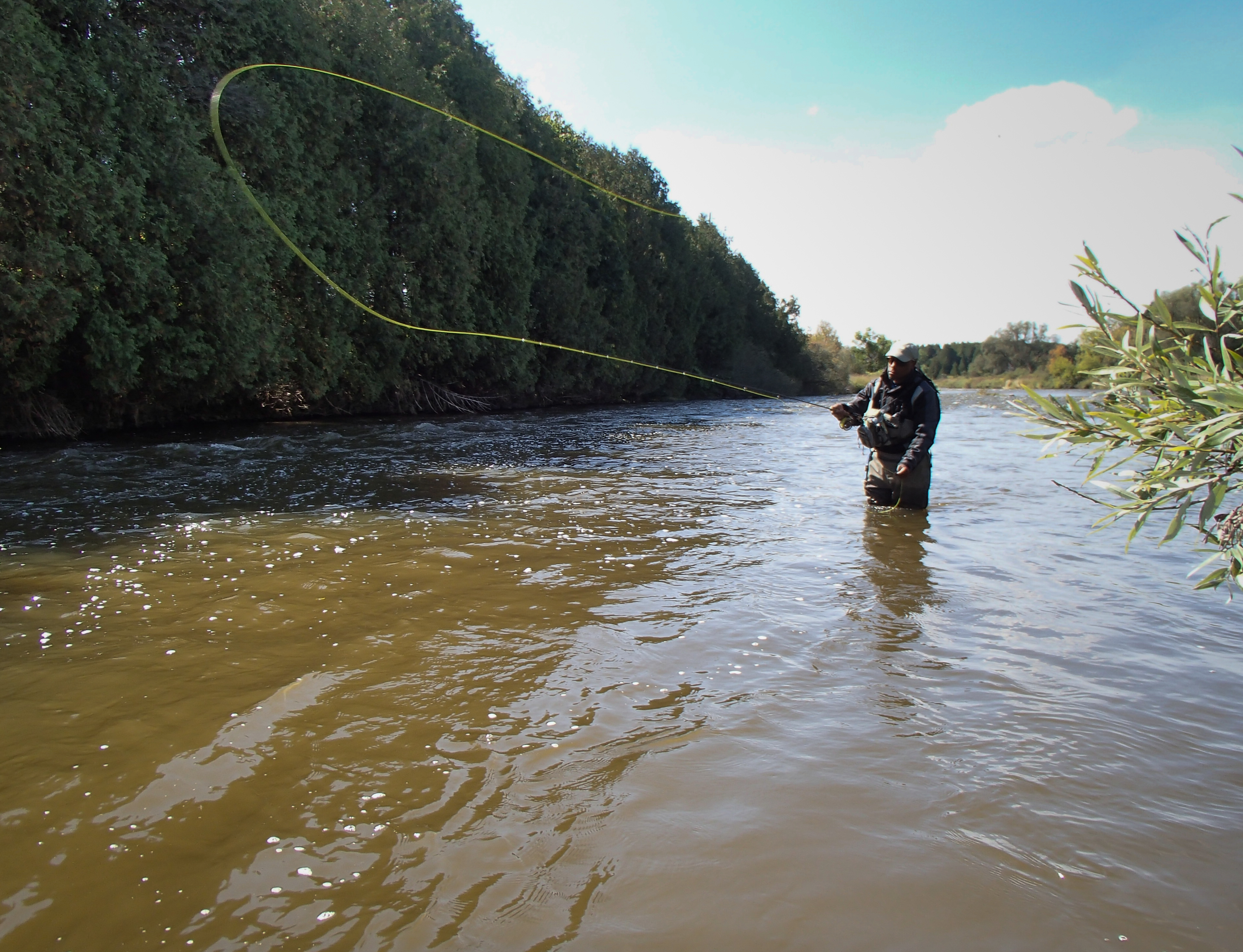 Late september fly fishing on the grand river for Grand river fishing