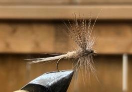 Tedy dry fly Feb 4 2020